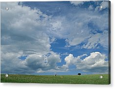 A Cloud-filled Sky Over Pronghorns Acrylic Print by Annie Griffiths