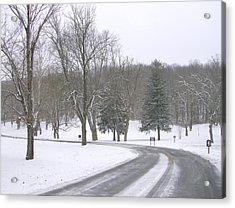 Acrylic Print featuring the photograph A Cold Winter's Day by Skyler Tipton