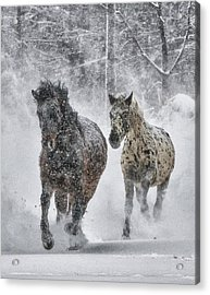 Acrylic Print featuring the photograph A Cold Winter's Run by Wade Aiken