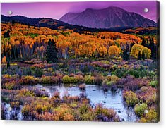 Acrylic Print featuring the photograph A Colorado Fall Along Kebler Pass by John De Bord