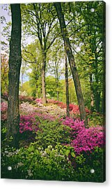 A Colorful Hillside Acrylic Print by Jessica Jenney
