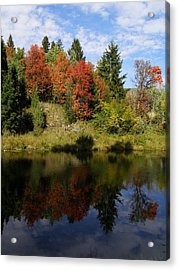 Acrylic Print featuring the photograph A Colorful Reflection by DeeLon Merritt