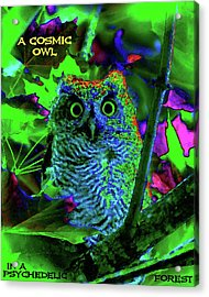 A Cosmic Owl In A Psychedelic Forest Acrylic Print by Ben Upham III