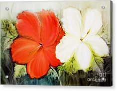 A Couple Of Flowers Acrylic Print by Fatima Stamato