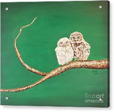 A Couple Of Owls Acrylic Print