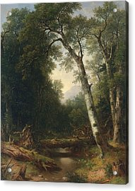 A Creek In The Woods Acrylic Print by Asher Brown Durand
