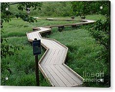 A Crooked Path Acrylic Print by Rod Jellison