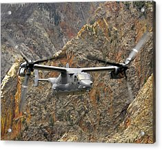 A Cv-22 Osprey Flies Over The Canyons Acrylic Print by Stocktrek Images