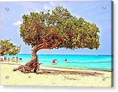 Acrylic Print featuring the photograph A Day At Eagle Beach by DJ Florek