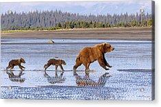 A Day At The Beach Acrylic Print