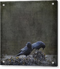 Acrylic Print featuring the photograph Blackbirds At The Beach by Sally Banfill