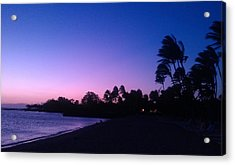 A Day In Paradise Acrylic Print by Anne Gerstenberger