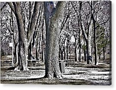 A Day In The Park Acrylic Print by Reb Frost