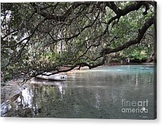 A Day Of Snorkeling Acrylic Print