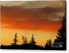 A Distant Rain Acrylic Print by CML Brown