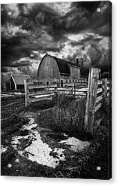 A Distant Thought Acrylic Print by Phil Koch