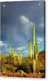 A Divine Touch Acrylic Print