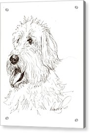 A Doodle Of My Doodle Acrylic Print by Diane Daigle