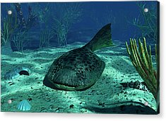 A Drepanaspis On The Bottom Acrylic Print by Walter Myers