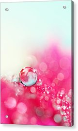 A Drop With Raspberrys And Cream Acrylic Print