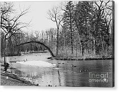 Acrylic Print featuring the photograph A Duck Pond by Cendrine Marrouat