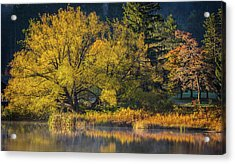 A Fall Day  Acrylic Print