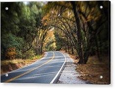 A Fall Roadway Acrylic Print