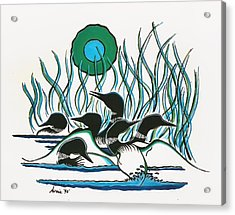 A Family Of Loons Acrylic Print