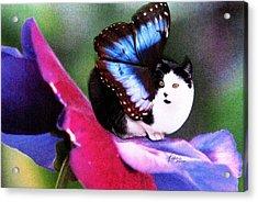 A Feline Fairy In My Garden Acrylic Print by Angela Davies