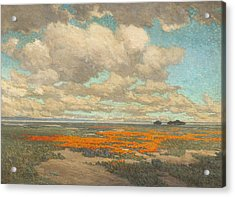A Field Of California Poppies Acrylic Print by Granville Redmond