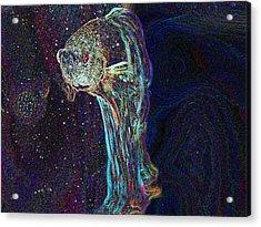 A Fish Called Poe Acrylic Print by Julie Niemela