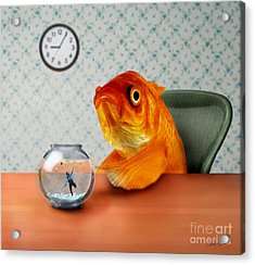A Fish Out Of Water Acrylic Print by Carrie Jackson