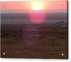 A Flare From South Africa Acrylic Print by Patrick Murphy