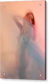 Acrylic Print featuring the photograph A Fleeting Moment In Time by Joe Kozlowski