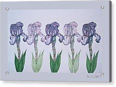 A Floral Line Acrylic Print