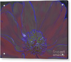 Acrylic Print featuring the digital art A Flower For Alphonse by Roxy Riou