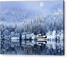 Acrylic Print featuring the photograph A Foggy Winter Night by Diane Schuster