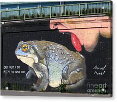 A Frog A Day Keeps The Doctor Away Acrylic Print