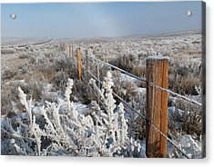 Acrylic Print featuring the photograph A Frosty And Foggy Morning On The Way To Steamboat Springs by Cascade Colors