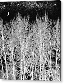 A Frosty Winter Night Acrylic Print