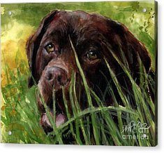 Acrylic Print featuring the painting A Gardener's Friend by Molly Poole