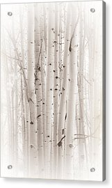 Acrylic Print featuring the photograph A Gathering by The Forests Edge Photography - Diane Sandoval