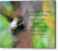 Acrylic Print featuring the photograph A Gentle Breath Of Heaven by Kerri Farley
