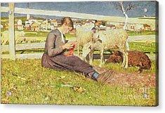 A Girl Knitting Acrylic Print by Giovanni Segantini