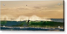 A Golden Surfing Moment Acrylic Print by Odille Esmonde-Morgan