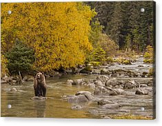 A Gorgeous Day For Fishing Acrylic Print by Tim Grams