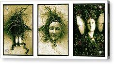 A Graft In Winter Triptych Acrylic Print