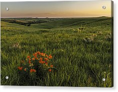 A Great View Of The Flint Hills Acrylic Print