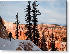A Hiker Walks Along A Ledge In Winter Acrylic Print by Taylor S. Kennedy