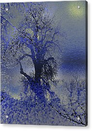 Acrylic Print featuring the photograph A Hoar Frost Morning by Irma BACKELANT GALLERIES